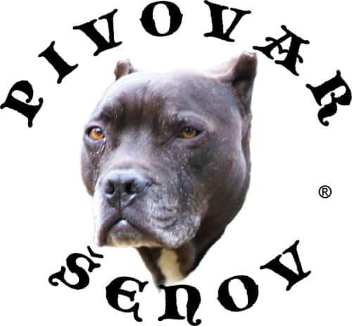 Pivovar Pitbull